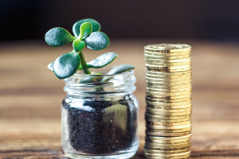 Денежные приметы и богатство: самые распространенные народные денежные суеверия по дням недели