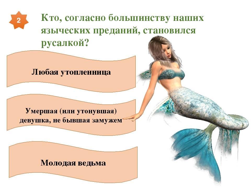Как стать русалкой? — david's blog.ru