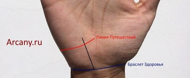 Линии на руке: значение, описание