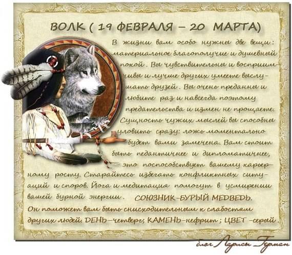 ???? прядущий мизгирь (славянский гороскоп 2020): прогноз для каждого тотема и характеристика года