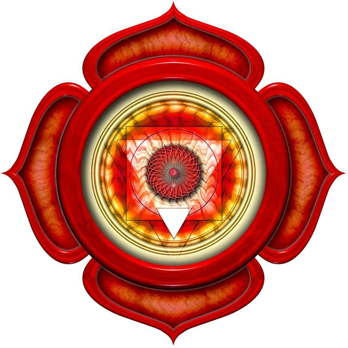 Значение и функции чакры муладхара