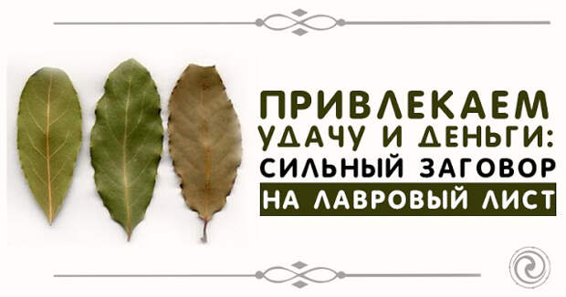"""Заговор на лавровый лист - обряд """"листья растут деньги идут""""- на здоровье и удачу"""