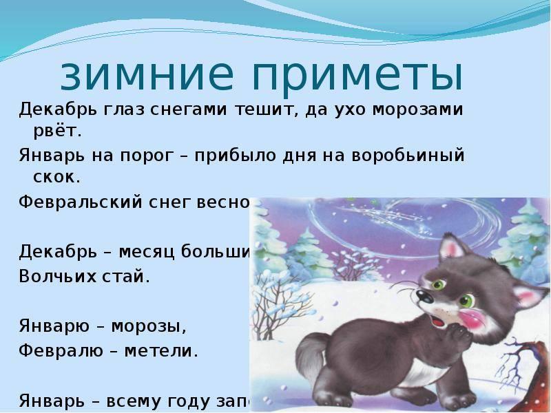 Русские народные приметы зимы. народные приметы о зиме — что поведает морозная сказка