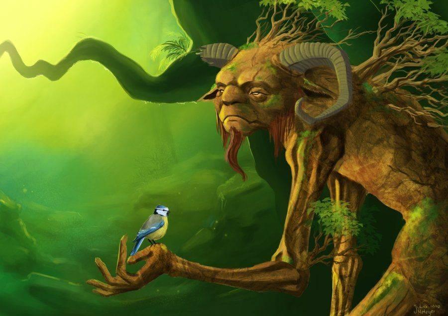Легенды о деревьях - ель - мифы, легенды, сказания  - статьи - легкость  ветра