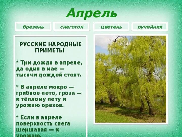 Народные приметы — гроза в апреле и её значение — гроза в апреле приметы — о психологии просто