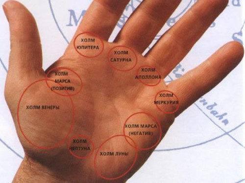 Что означает холм юпитера на руке и где находится