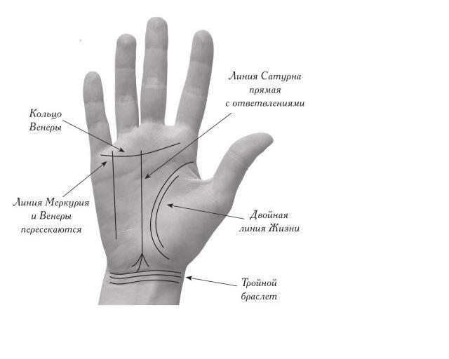 Линия меркурия на руке: значение