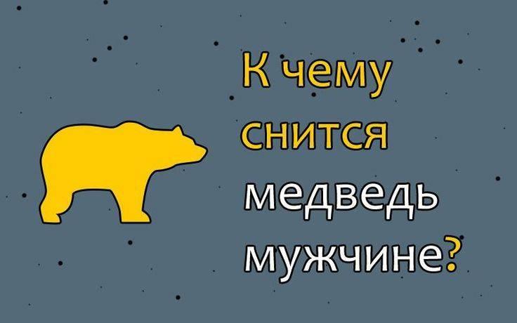 К чему снится медведица с медвежатами: что ожидать мужчине и женщине после увиденного сна