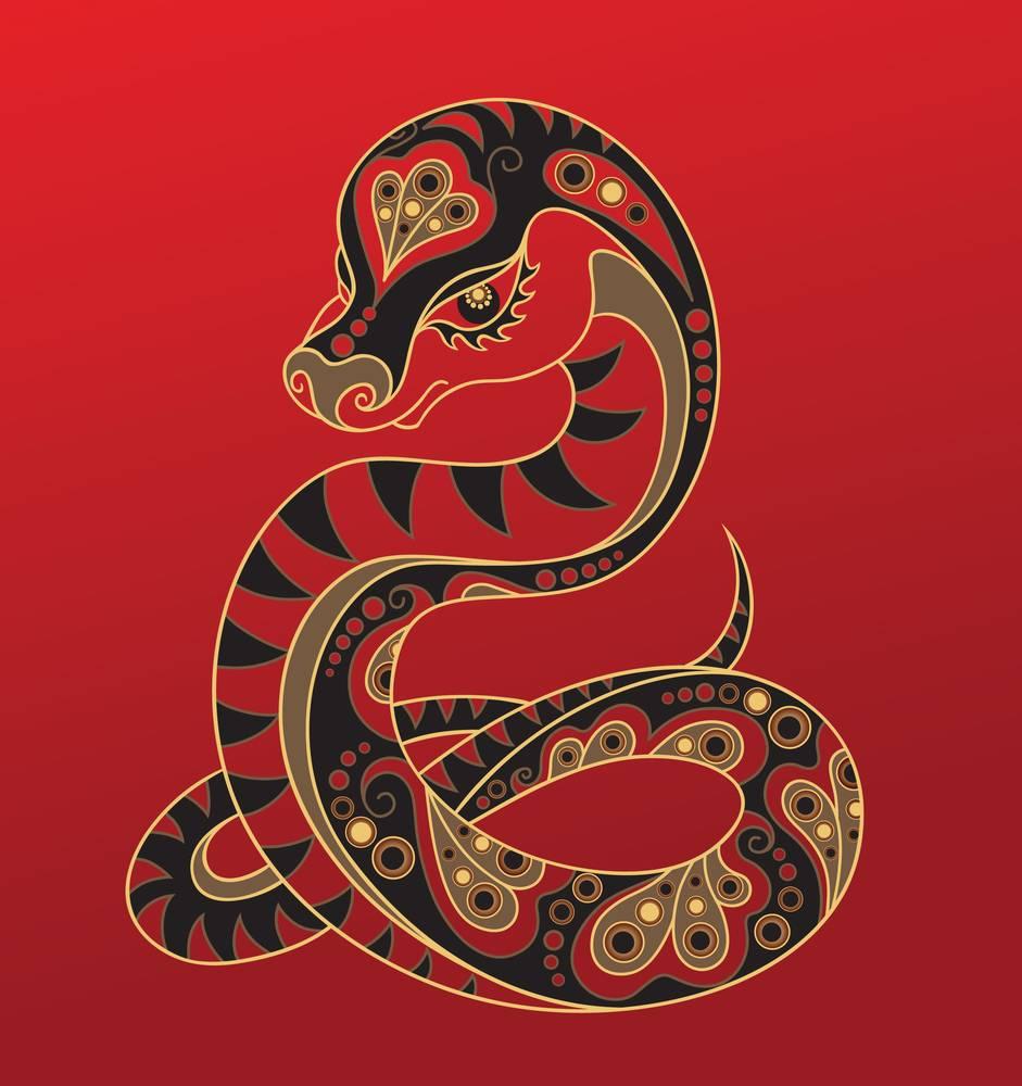Китайский гороскоп для змеи - совместимость с другими знаками