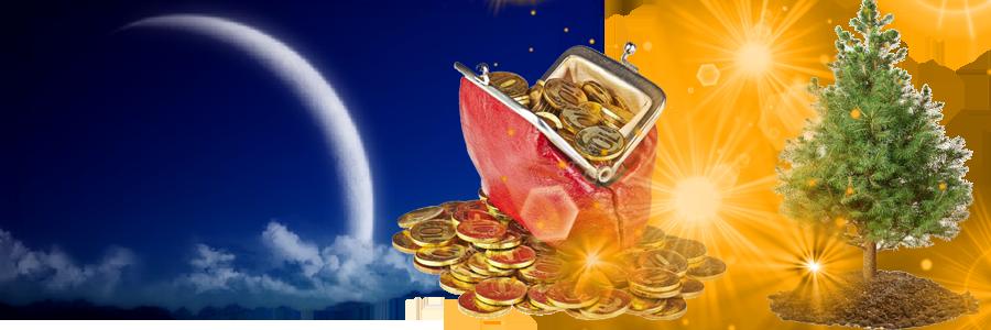 Волшебство полнолуния – обряды, заговоры и ритуалы для привлечения денег   инфо-сми
