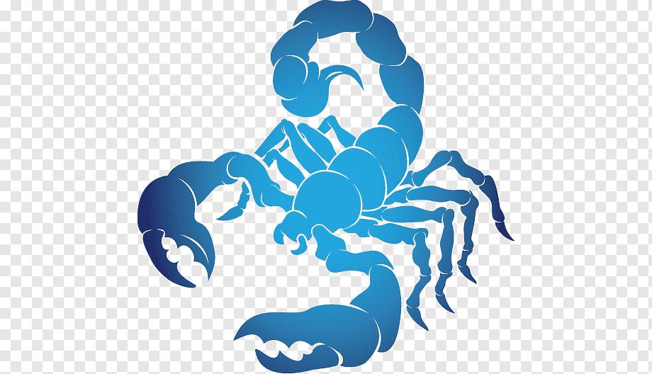 Скорпион знак зодиака совместимость - с другими знаками мужчина и женщина