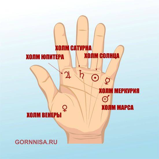 Линия солнца на руке: знаки, расположение, поведение и полная расшифровка  | узнай свою судьбу