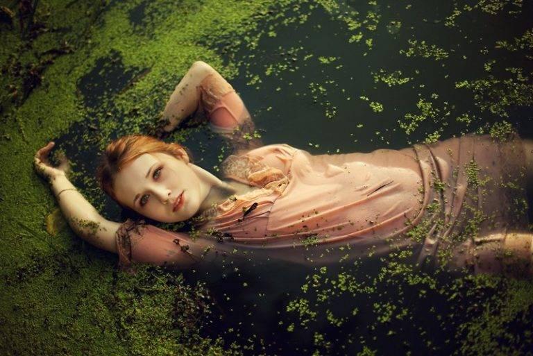 К чему снится болото. видеть во сне болото - сонник дома солнца