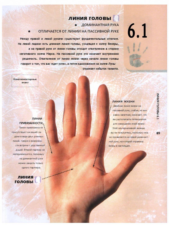 Хиромантия для начинающих с разъяснениями: как гадать по руке и что означают линии, гадание по ладони с фото и видео и основные значения с расшифровкой