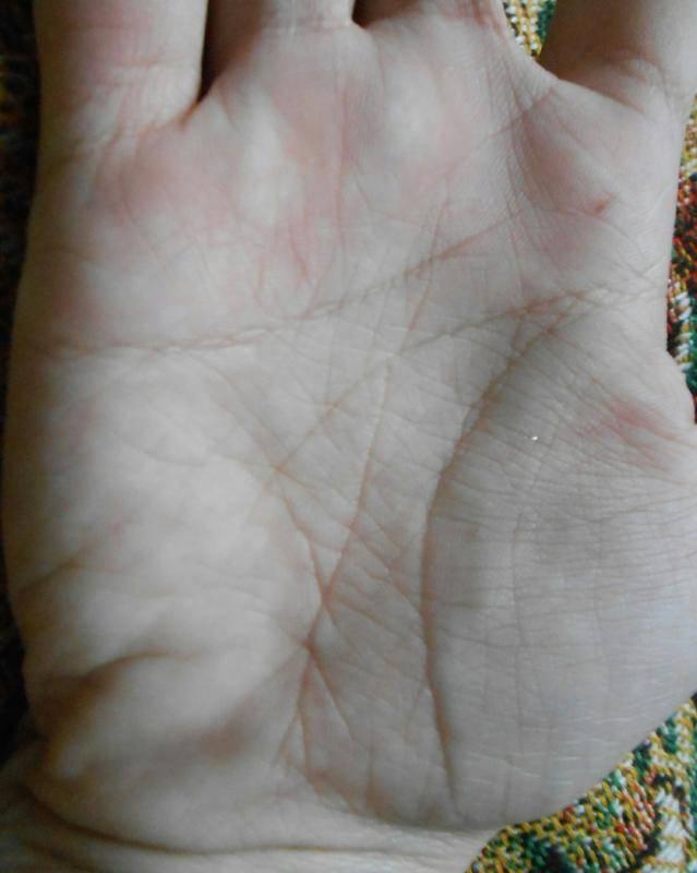 Все линии на руке