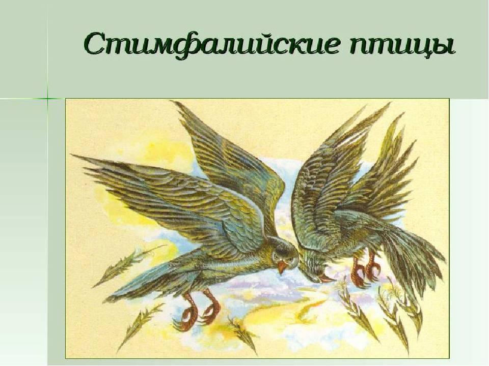 Двенадцать подвигов геракла - русская историческая библиотека
