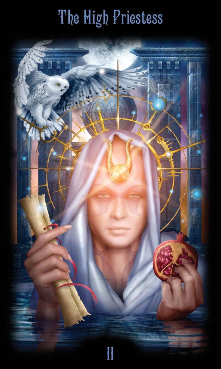 Таро божественного наследия и галерея снов марчетти