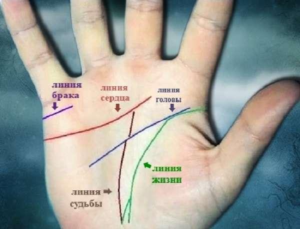 Линия интуиции на руке по хиромантии - толкование и значение