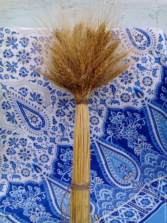 Сноп пшеницы