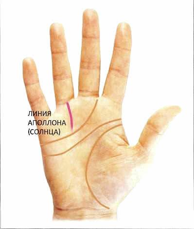 Линия Солнца на руке и её значение