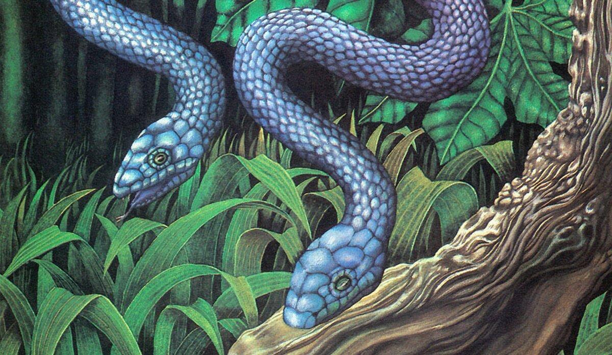 Чудо-змея с двумя головами родилась в сша. амфисбена — двуглавая змея из древнегреческих мифов