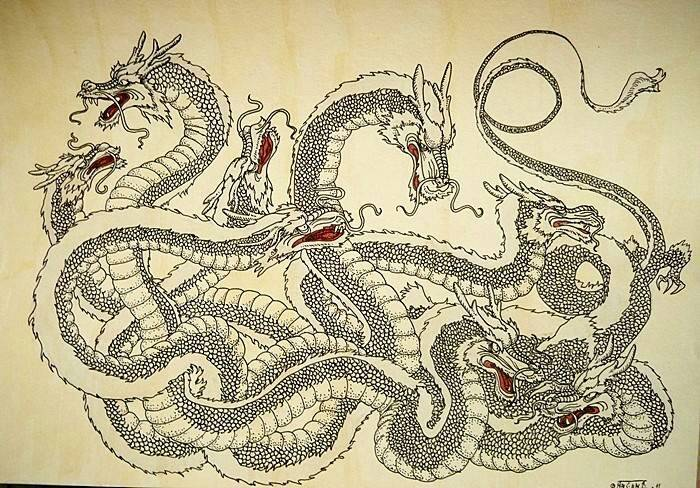 Дракон   mythological creations   fandom