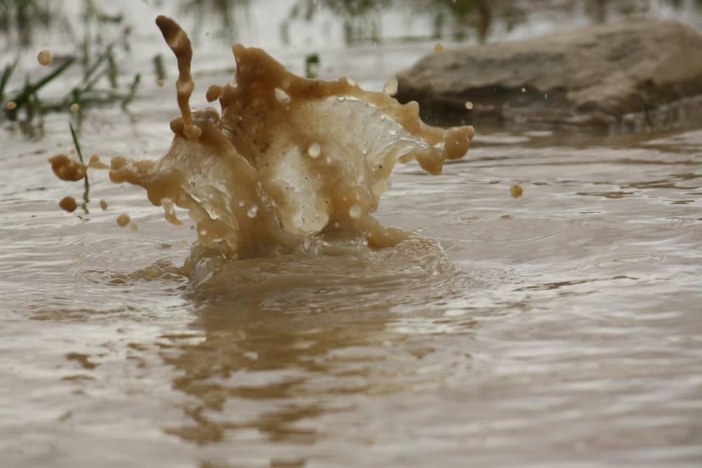 Сонник стоять в грязной воде. к чему снится стоять в грязной воде видеть во сне - сонник дома солнца