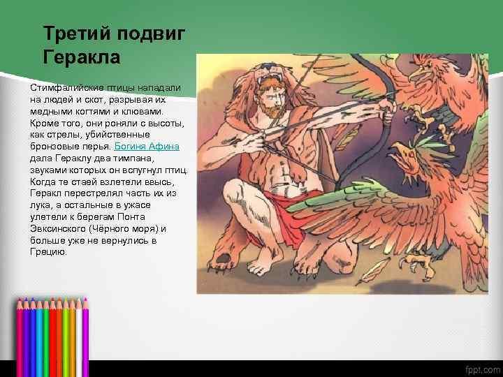 3 подвиг геракла стимфалийские птицы самое главное. онлайн чтение книги подвиги геракла the labours of hercules стимфалийские птицы. описание мифа по н.а. куну