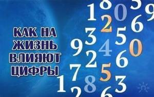 c96092be99f75331747ba1ba5fbaa040.jpg