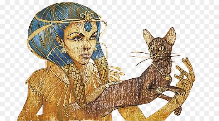 Загадочные и мистические существа – кошки (7 фото) — нло мир интернет — журнал об нло