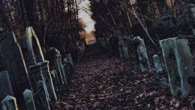 Что означает сон кладбище: снится могилка, толкование сновидения различными сонниками, связь с депрессией
