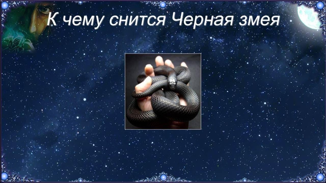 Убить нападающую змею