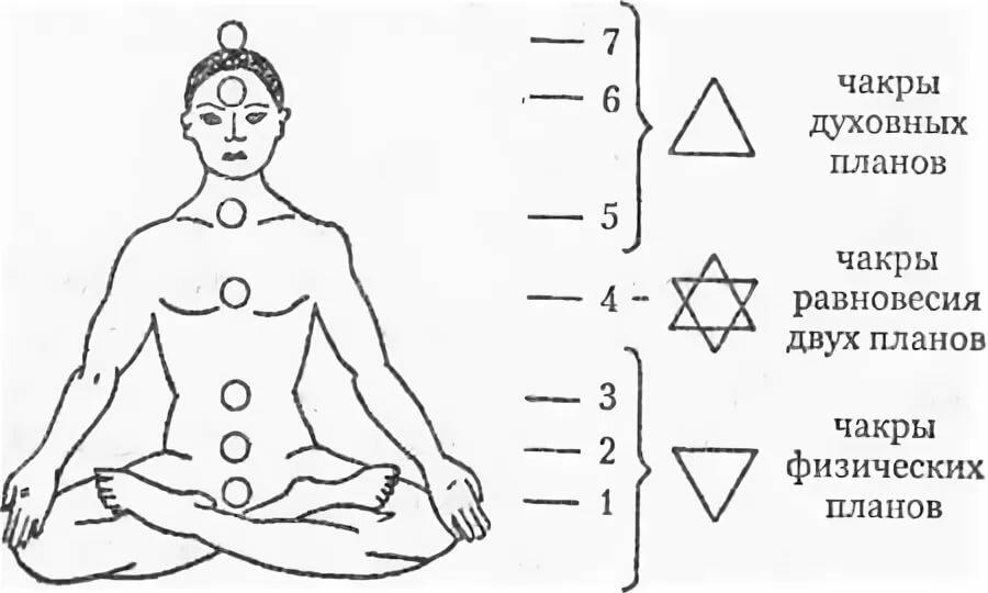 Муладхара чакра: энергия, цвет, работа, аура - планетарная йога: путь духовных исканий
