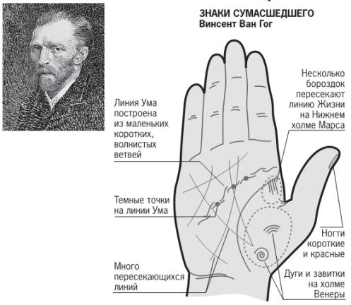 Линия ума (головы) на руке: значение, хиромантия, длинная