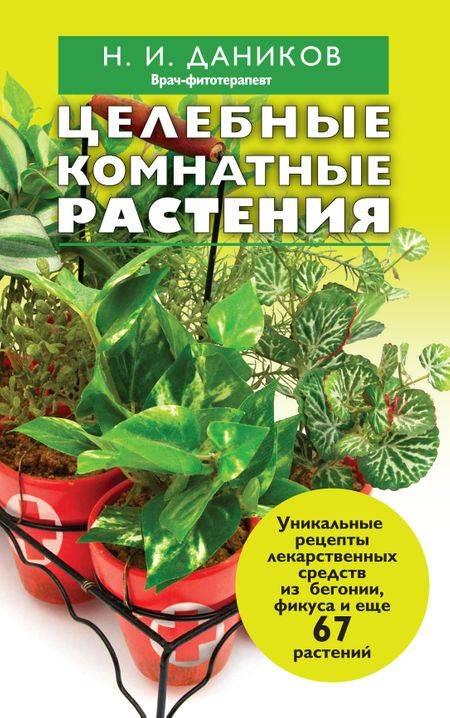 Живое дерево: лечебные свойства и вред, противопоказания и правильное применение