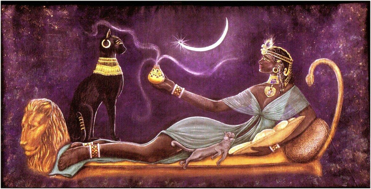 Магия кошек: магическая сила котов | магия