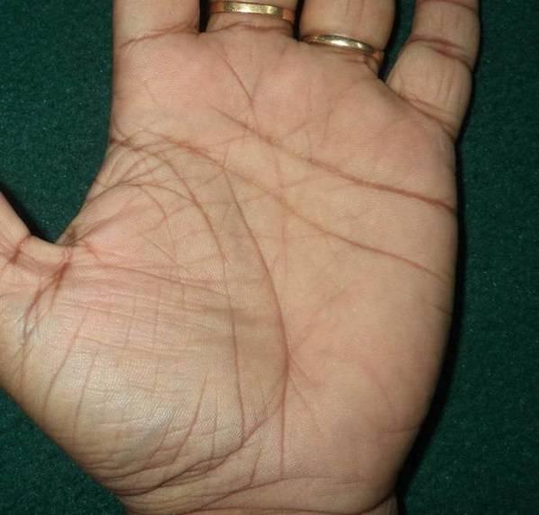 Чтение основных линий рук и их особенность