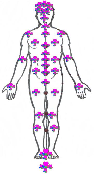Точное расположение чакр на теле человека