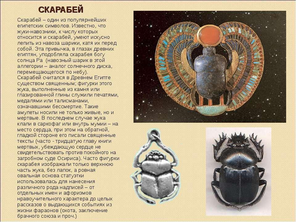 Жук скарабей – талисман из древнего египта