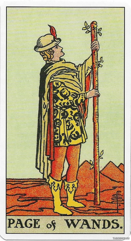Рыцарь посохов таро: значение в отношениях, любви, работе
