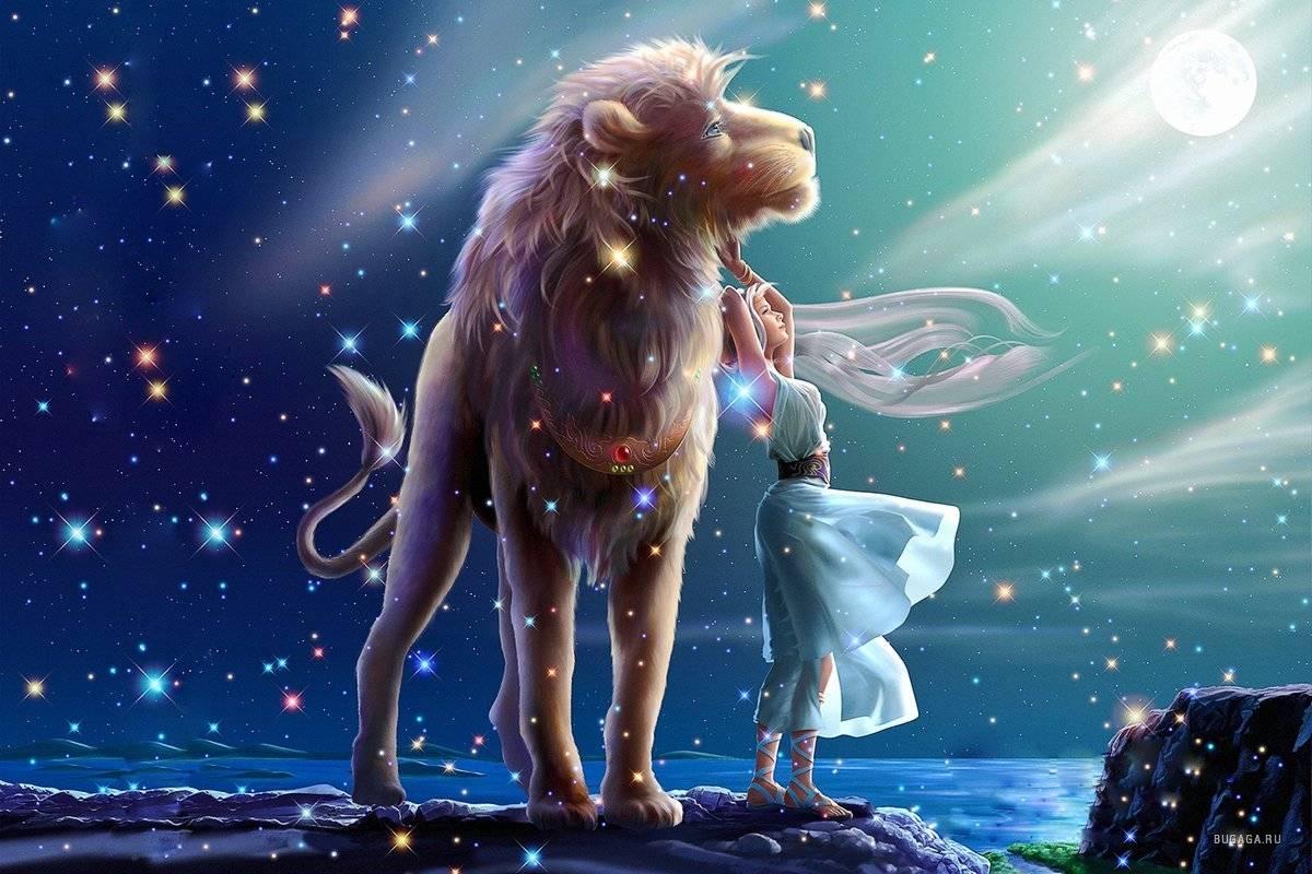 Знак зодиака лев   интересный зодиак
