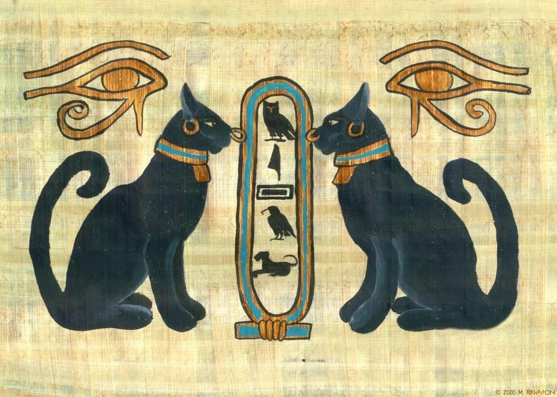 Мистика кошек — след в истории и энергетика (11 фото)