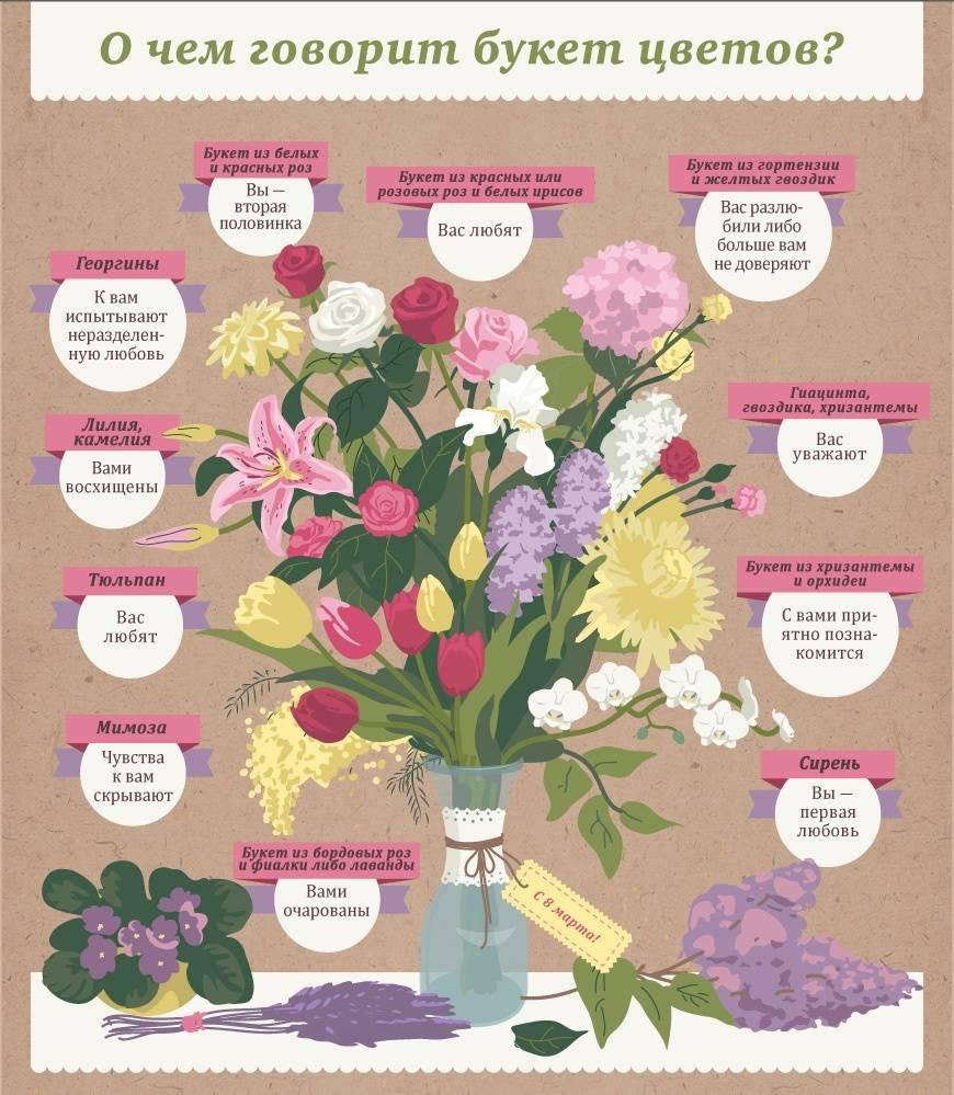 Подбираем правильное количество роз и цвет — как не испортить праздник