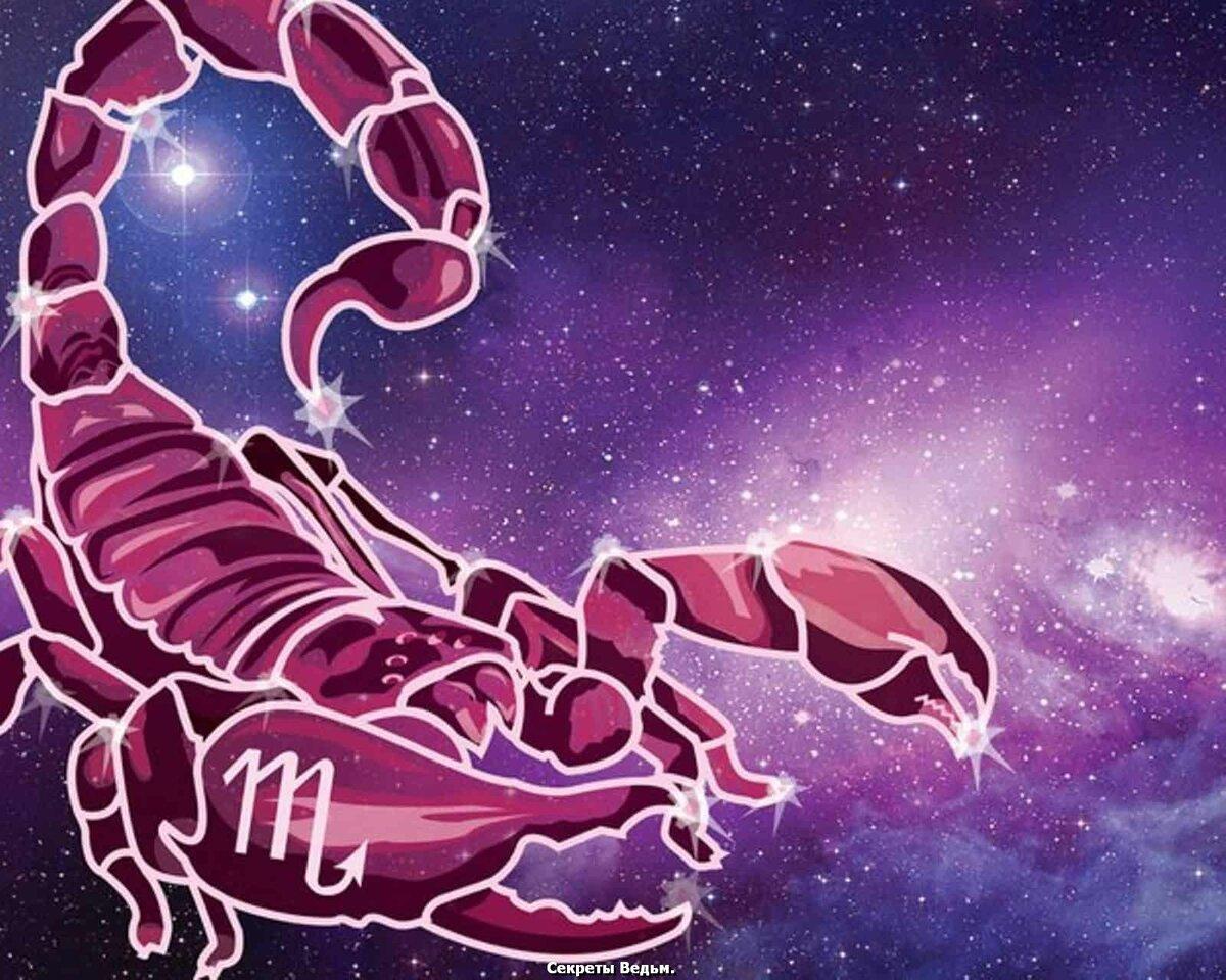 Скорпион знак зодиака (24 октября - 22 ноября) характеристика, камень - интернет-журнал «оракул»