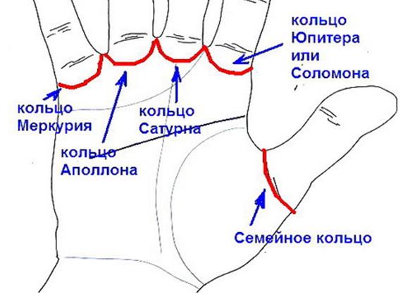 Кольцо семьи на руке: значение в хиромантии