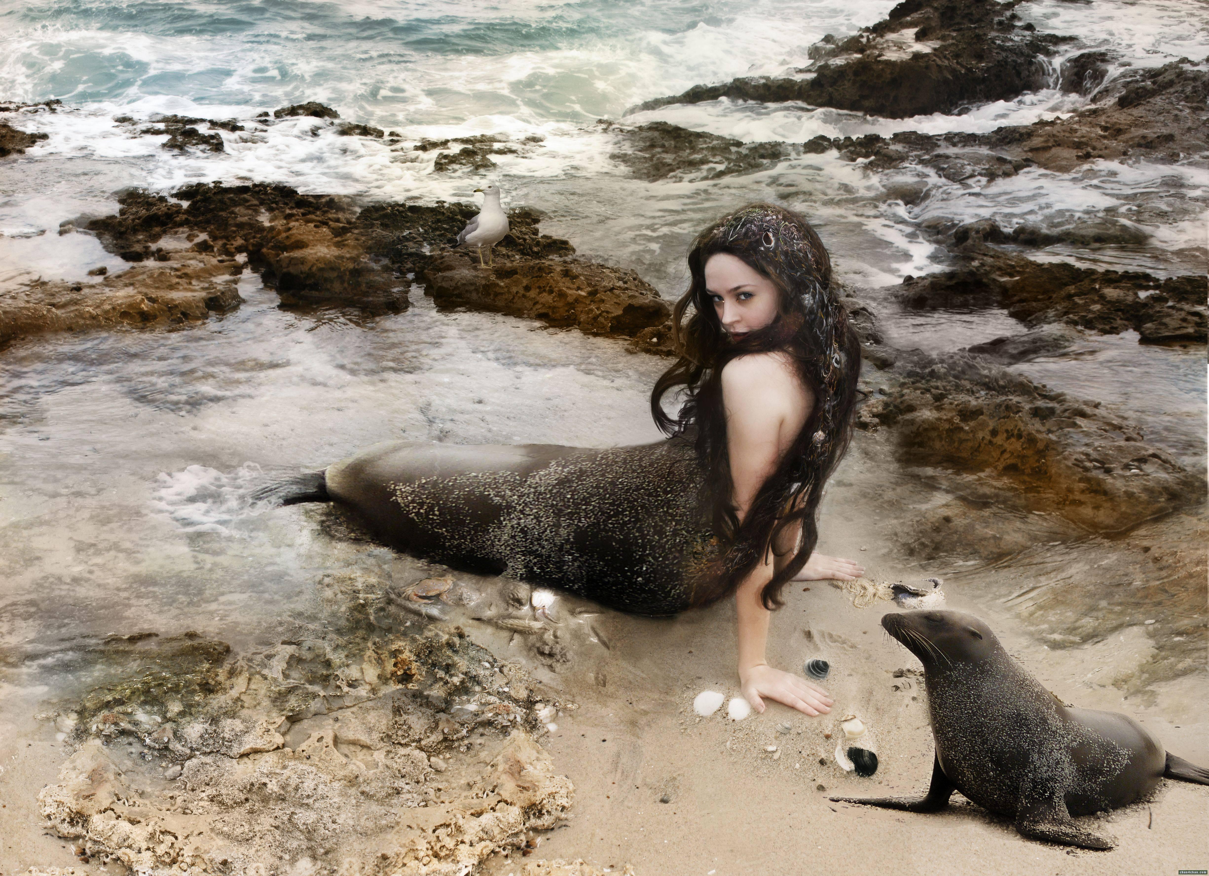 Морской народ шелки – мифология