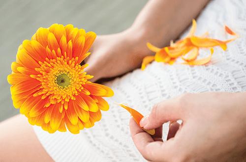 Гадания на ромашке «любит не любит» онлайн версия и ритуалы с настоящими цветами