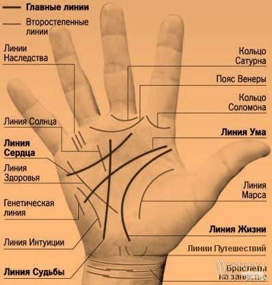 Пояс венеры на руке: значение и описание