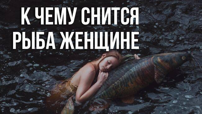 К чему снится рыба. видеть во сне рыба - сонник дома солнца