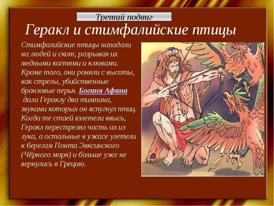 Гераклиада :  | астромиф v.2.0